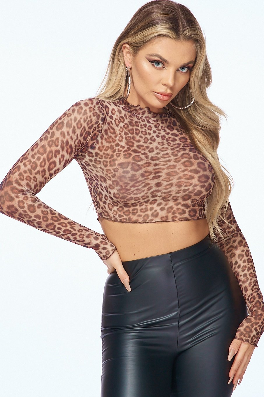 Animal Print Mesh Long Sleeve Crop Top - Style Delivers