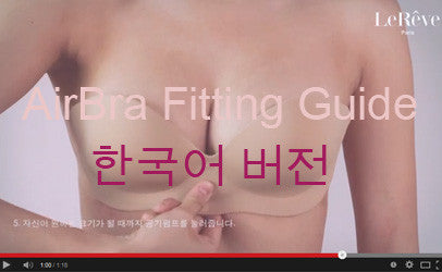AirBra Fitting Guide - Korean