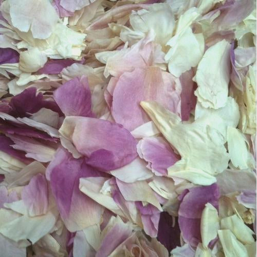 Super Bloom Rose Oil Treatment