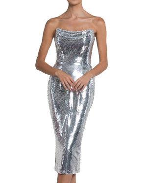 Strapless Silver Sequin Dress