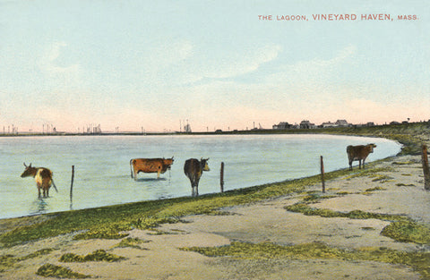 Vineyard Haven - Lagoon (Cows) Night Light