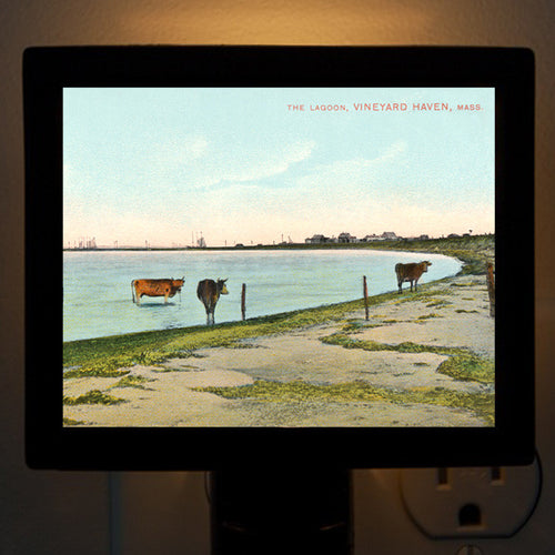 Vineyard Haven, MA - Lagoon With Cows Night Light - That Fabled Shore Home Decor