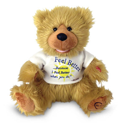 noah bear feel better g1063