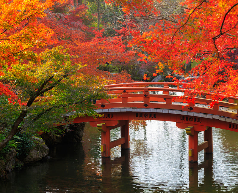 Experience Autumn in Japan at Home
