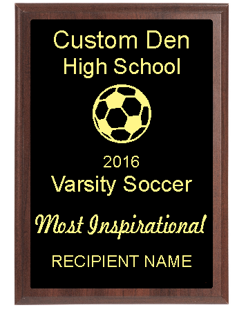 High School Soccer Award Most Inspirational