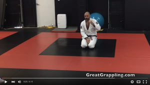 BJJ - Crossing the Street [Video]