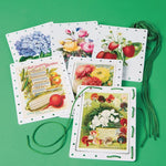 Vintage Garden Jumbo Lacing Cards (Set of 6)