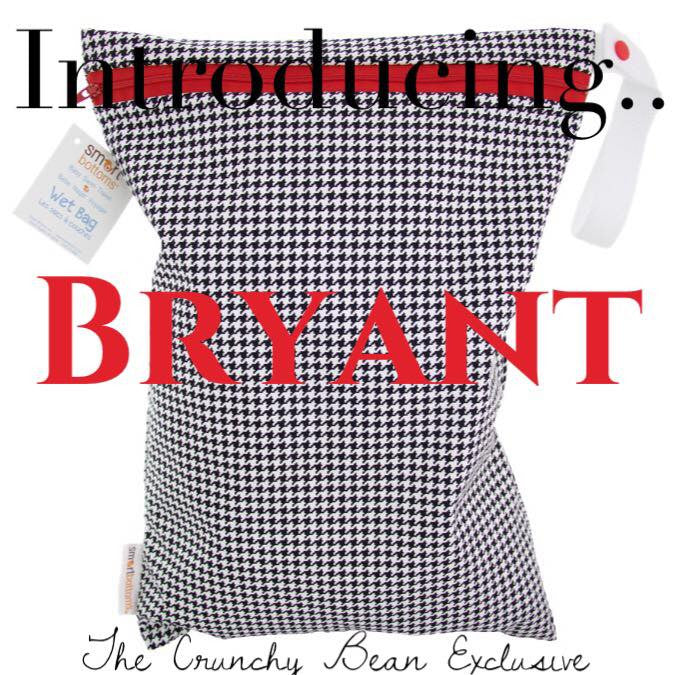 Smart Bottoms Bryant WetBag