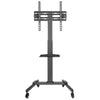 "TV Portable Trolley Stand | 32""-55"""