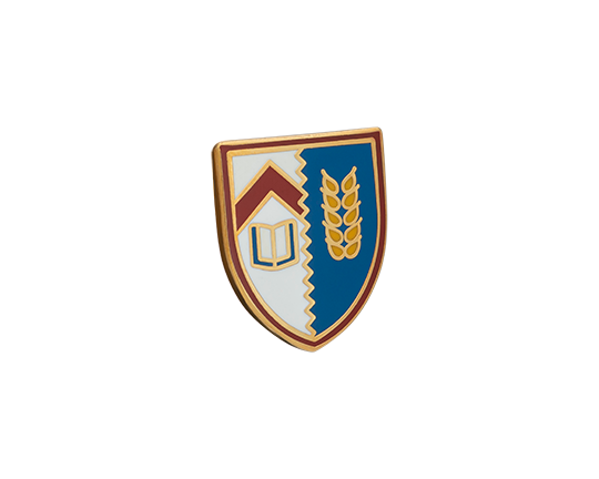 Kellogg College Lapel Pin