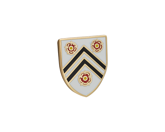 New College Lapel Pin