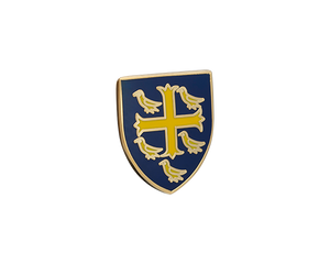 University College Lapel Pin