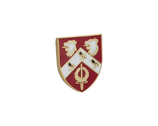 St Anne's Lapel Pin