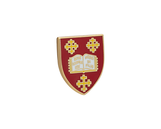 Mansfield College Lapel Pin