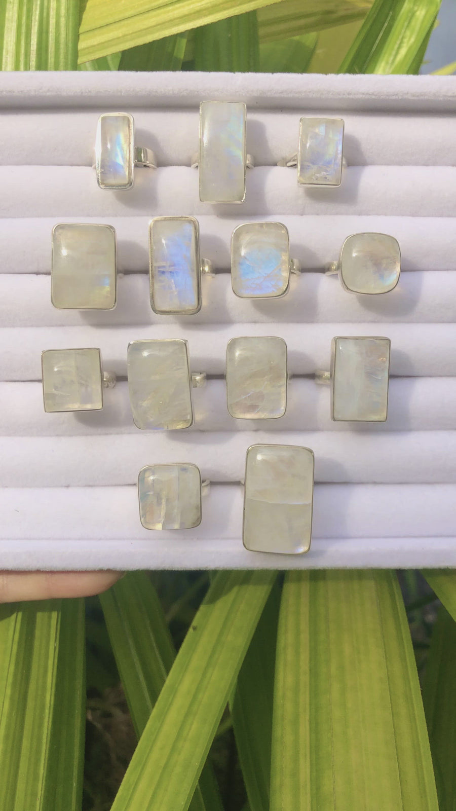 Rectangle Moonstone Flash Ring