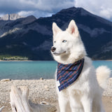 Jasper Plaid Bandanna - Dressed By Finn, LLC
