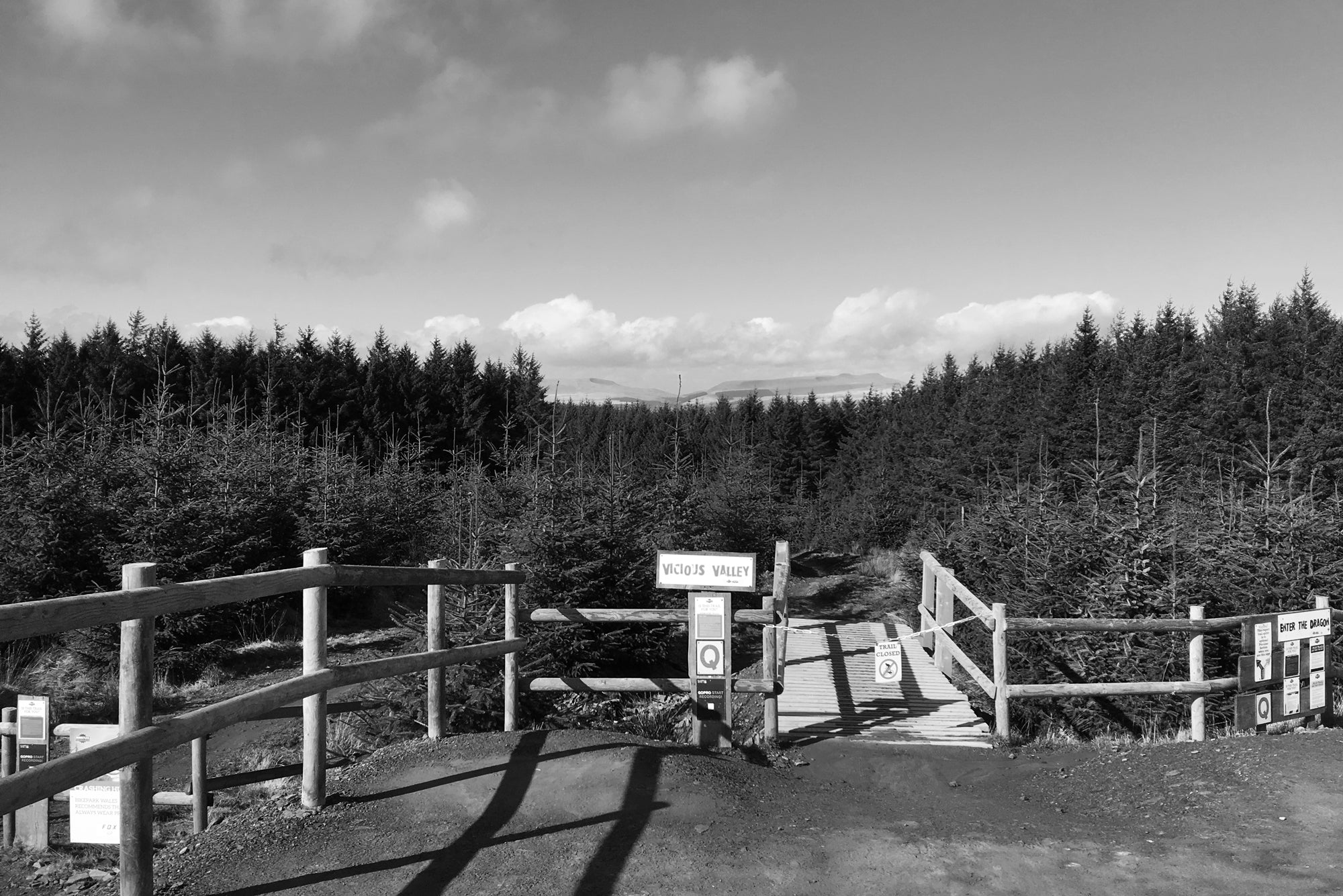 the W2 Trail at Afan