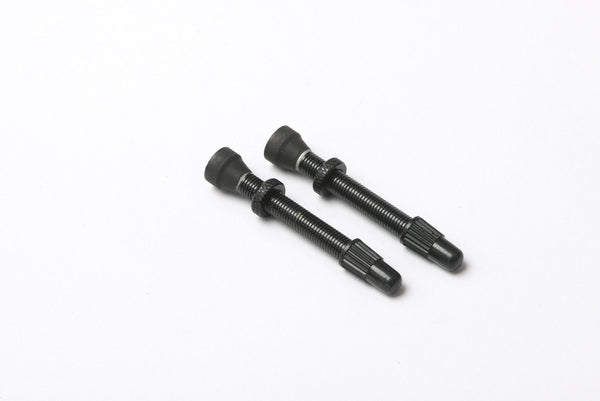 Hunt Tubeless Valves (Pair)