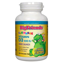 Load image into Gallery viewer, Big Friends Vitamin D3 400 IU Chewable Berry Bunch - 250 Tablets