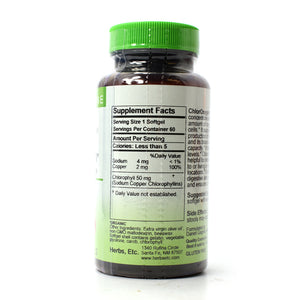 ChlorOxygen Chlorophyll Concentrate Professional Strength - 60 Softgels