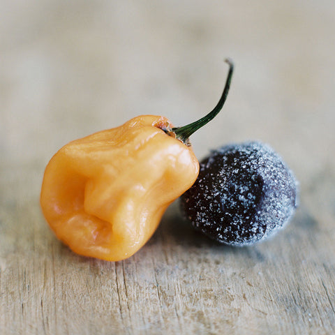 Dark Chocolate Habanero