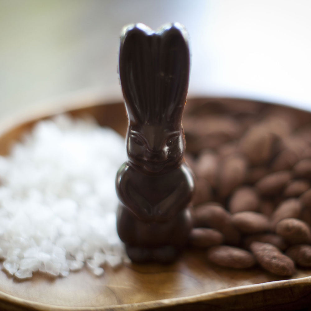 Solid Dark Chocolate Bunny with Caramelized Almonds & Sea Salt