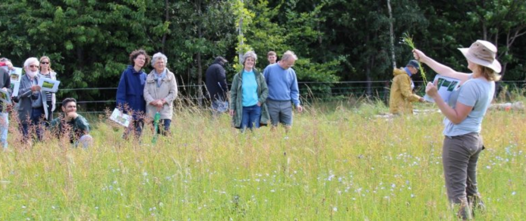 Farming For Nature Walk with Ailbhe Gerrard - Saturday 22nd August