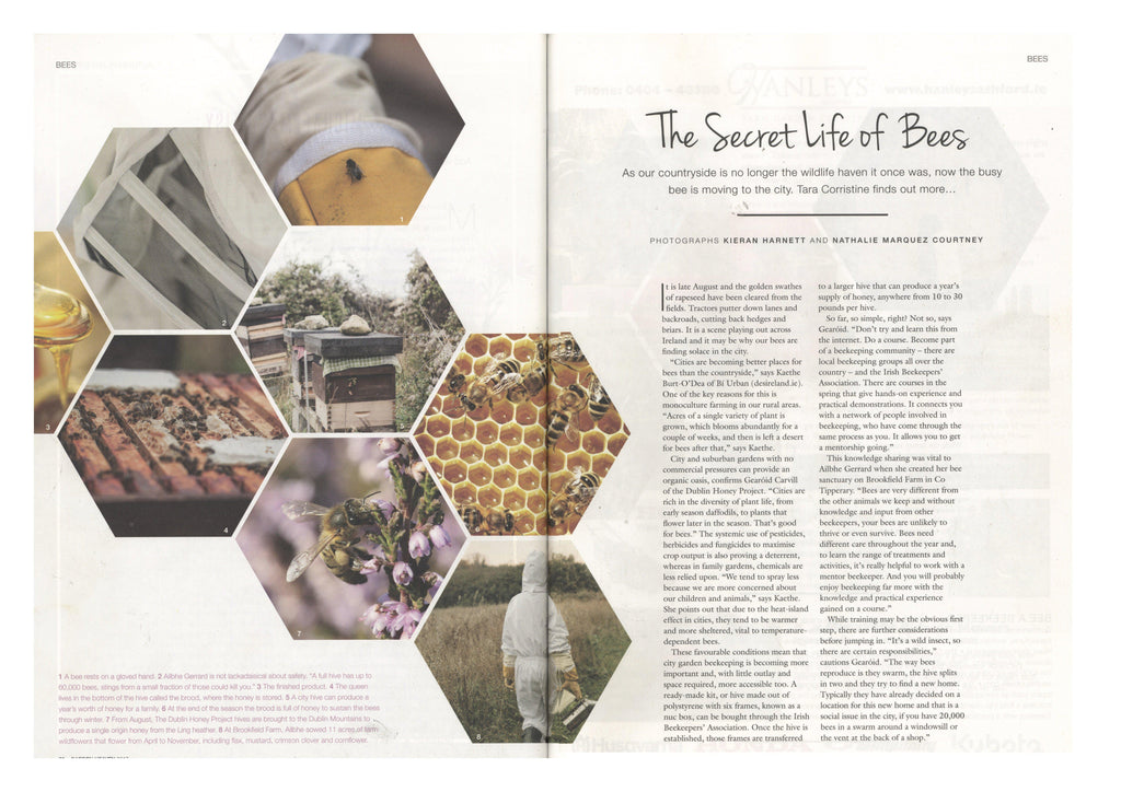 Image Interiors & Living - The Secret Life of Bees-Brookfield Farm