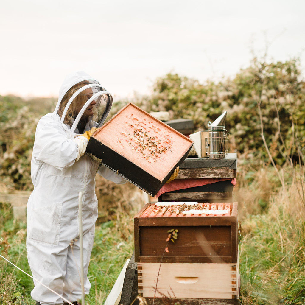 Hiveshare Bee Supporter - Brookfield Farm