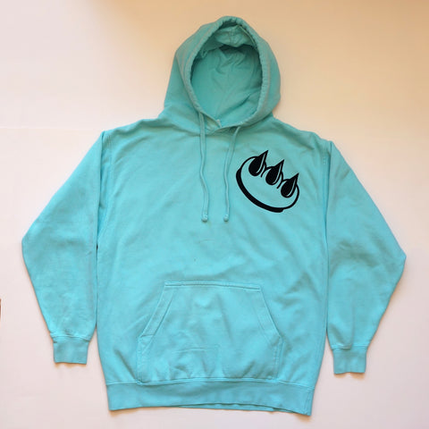 PMS TURQUOISE HOODIE