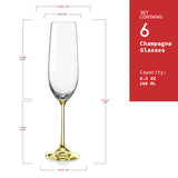 "Bohemia Crystal ""Rainbow"" Colored Champagne Flutes, Set of 6 - available for sale at http://www.wineohh.com 
