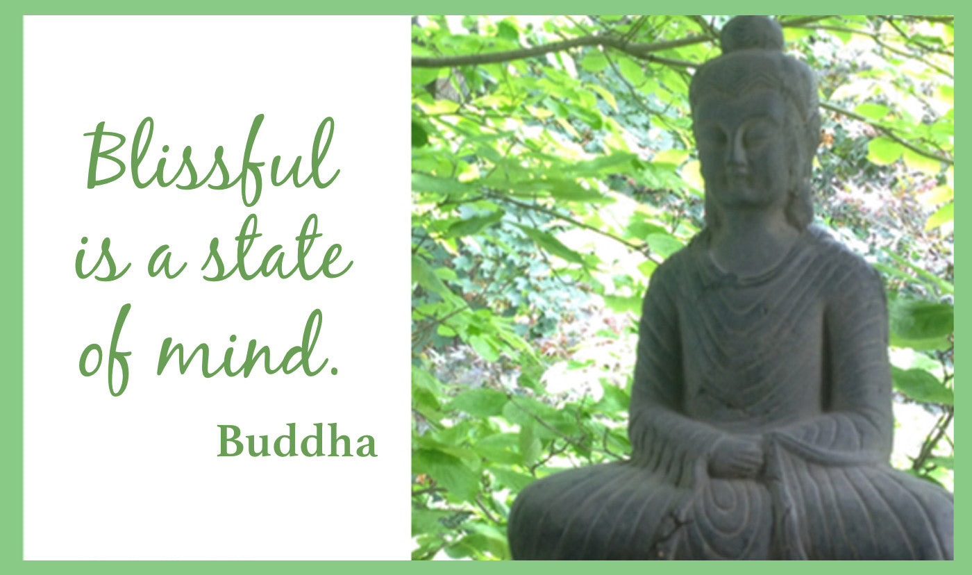 Buddha quotes  - good vibes guotes