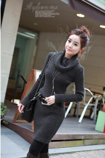 Winter Collection Turtleneck Sweater Dress Thickening Pullover Long Sleeve Knitted Sweater .