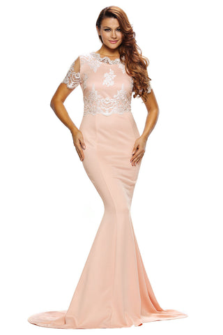 Her Elegant Exquisite Lace Trim Beautiful Formal Gown