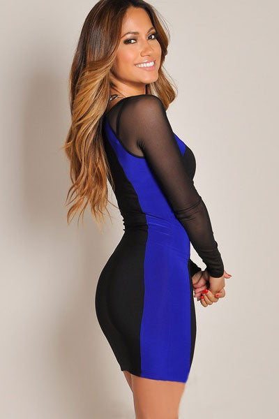 Sheer Mesh Long Sleeves Bodycon Black Mini Dress