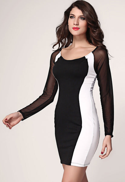 Sheer Mesh Long Sleeves Bodycon  Black White Mini Dress