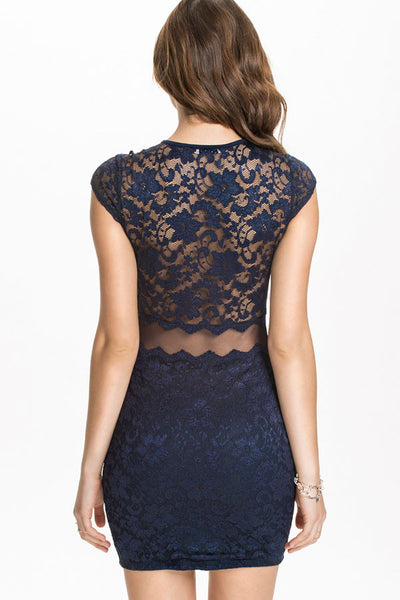 Trendy Series Sexy Mesh Lace Bodycon Dress