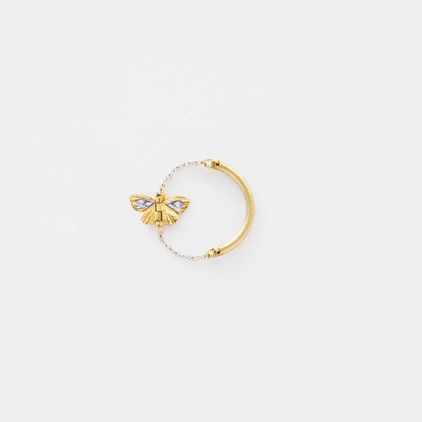 Tiny Asterope Migration Chain Ring