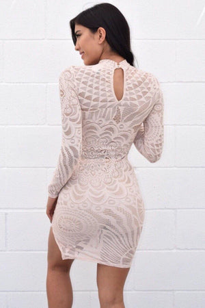 Lace see through long sleeve nude dress - Dimesi Boutique