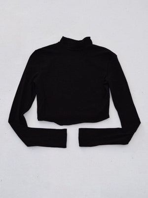 Badra Turtle Neck Crop Top - Dimesi Boutique