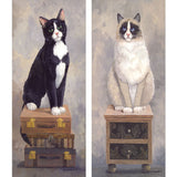 Cat Photos Printed on Canvas for Wall Decor Without Frame - WallDecal