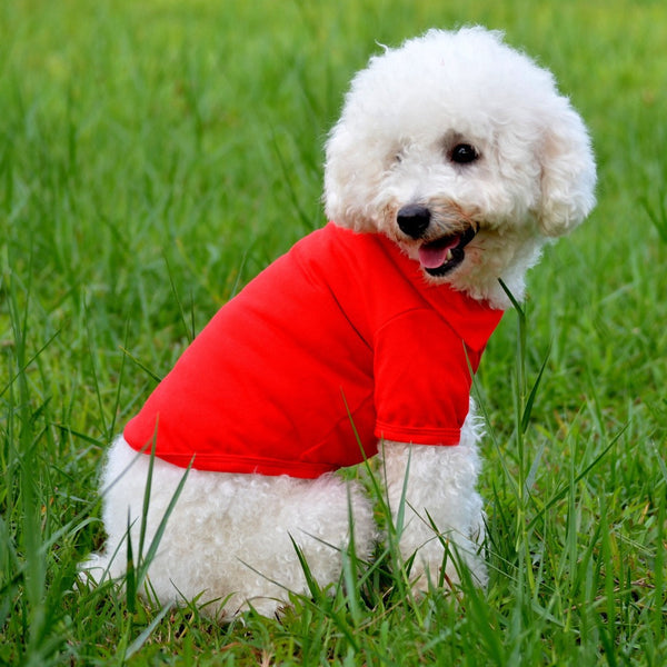2016 New Dog Cloth Pet Coat Dog Polo T shirt Pet  Clothes  Casual Puppy  Lapel POLO T-Shirts Solid Cozy Shirt 6 Colors
