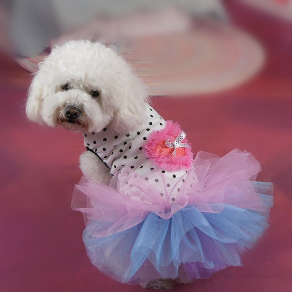 Cute Small Dog Dresses with Polka Dot Top Skirt