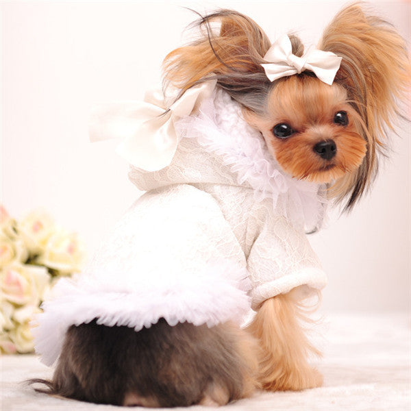 Mr Michael Girl Dog Clothes Winter Female Dog Coat Cute Lace Fleece Lined Warm Dog Jacket Chihuahua Yorkshire Winter Dog Clothes