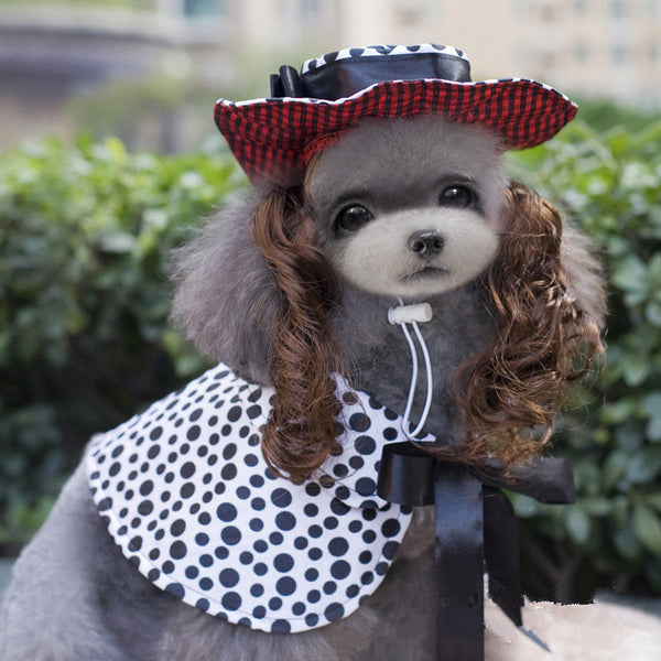 Dog Clothes Dog Cape w/Curly Hair Hat Set Small Dog Clothes