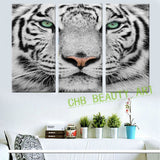 3 Panels Blue Tiger Eyes Canvas Painting Printed Painting Home Decor Wall Painting Art Wall Pictures For Living Room Unframed