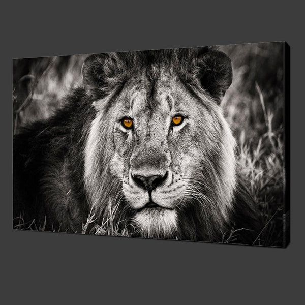 2016 Oil Painting Hot Sell! Wall Painting Animal And Lion Beautiful Eyes Paint On Canvas Prints Home Decorative Art Picture