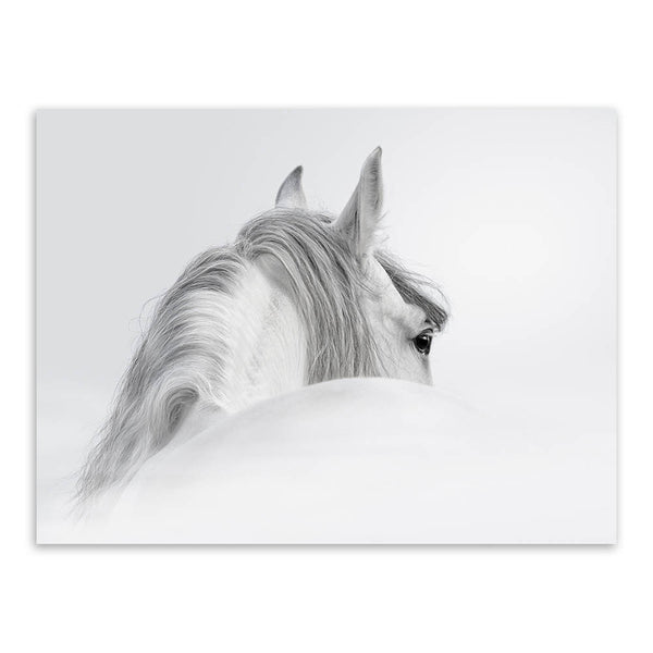 Triptych Modern Minimalist Black White Horse Animal Head Photo  Art Print Wall Picture Canvas Painting Home Decoration No Frame