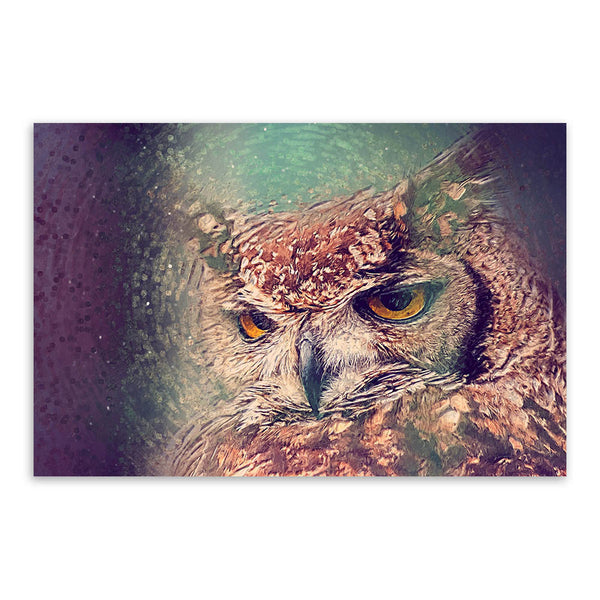 Colorful Impression Animal Head Owl Peacock Crane Art Print Poster Wall Picture Canvas Painting No Framed Home Living Room Deco