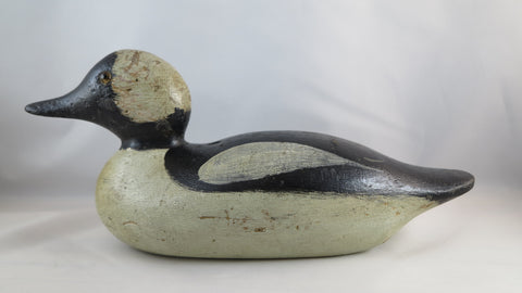 Mason Bufflehead Drake - SOLD